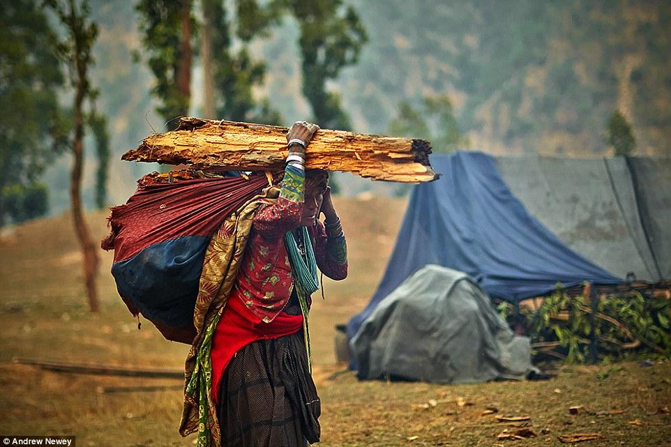 Но в последние годы в связи с вырубкой лесов рауте всё чаще приходится идти на контакт с местными жи
