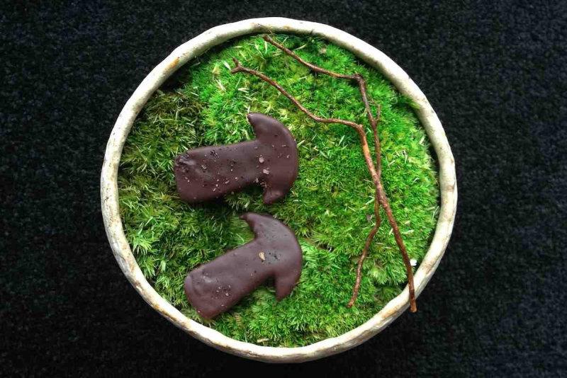 Крайнее блюдо: привет из покрытых мхом лесов Японии. Грибы были ферментированы, глазурированы, и всп