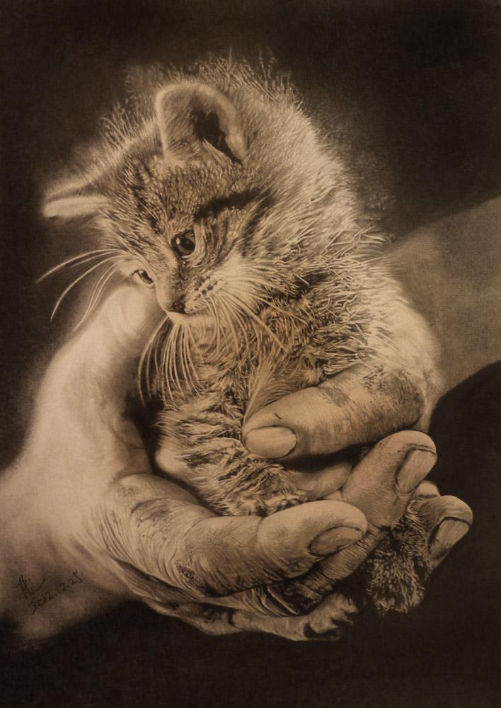 Рисунки животных от Пол Лунг (Paul Lung)