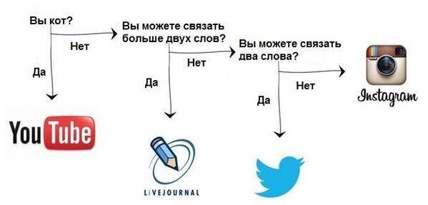 Про выбор соцсетей