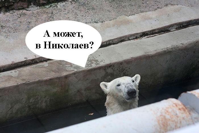 Зоопарк, Николаев