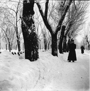 Екатерининский парк в Москве. «Рая стоит на боковой аллее»