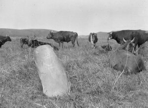 Долина реки Текес. Каменная колонна с вырезанным человеческим лицом