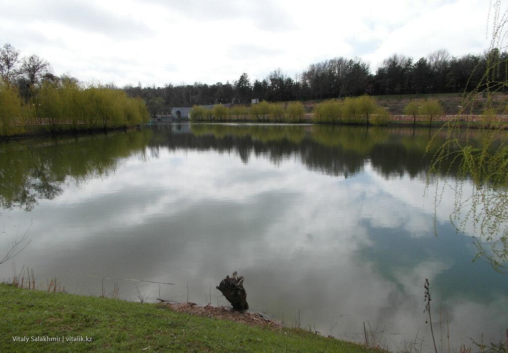 Северная сторона озера дендропарка Шымкента
