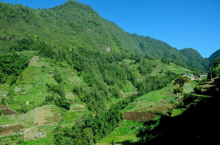 Долина Озеро Саранган (danau sarangan) рядом с вулканом Лаву на Восточной Яве Озеро Саранган (Danau Sarangan) рядом с вулканом Лаву на Восточной Яве 0 1b11e2 c20dc252 XXL