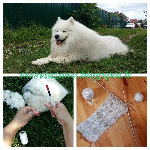 Что сделать из собачьей шерсти