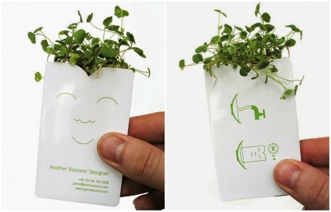 Если пакетик поместить вводу, товнем вырастет зелень. Визитка компании, выпускающей игрушечные са