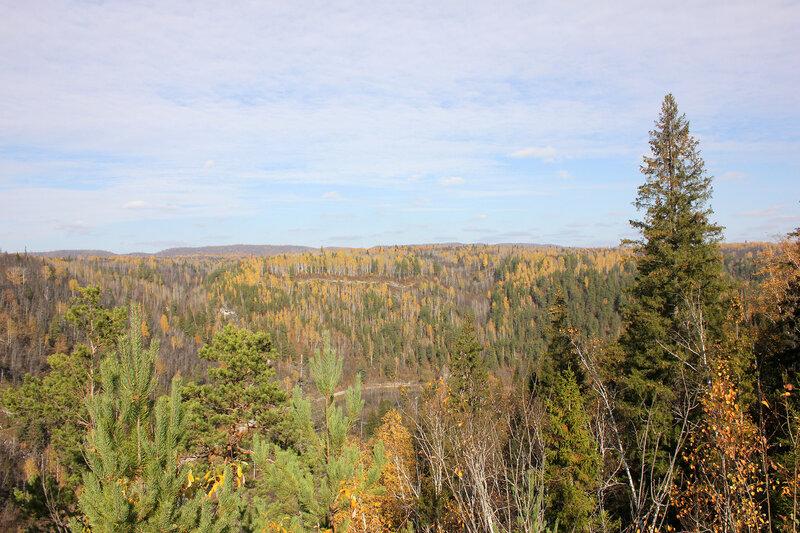 Леса на горах Южного Урала