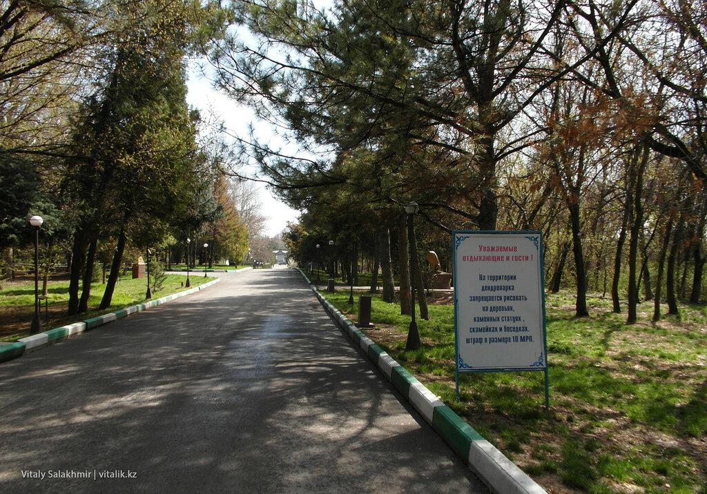 Запрет рисовать в дендропарке Шымкента