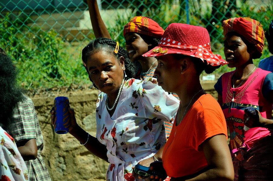 Свистопляска на Мадагаскаре