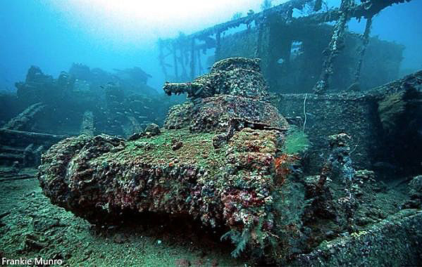 tank14.jpg
