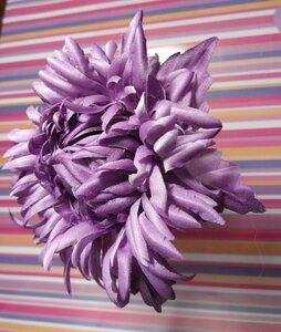 Астры и хризантемы - Страница 9 0_138210_1746c9b3_M