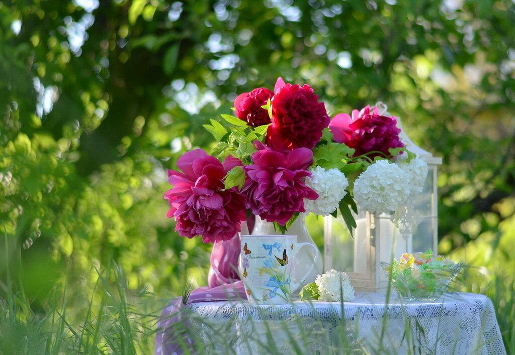 Весна -для тебя!!