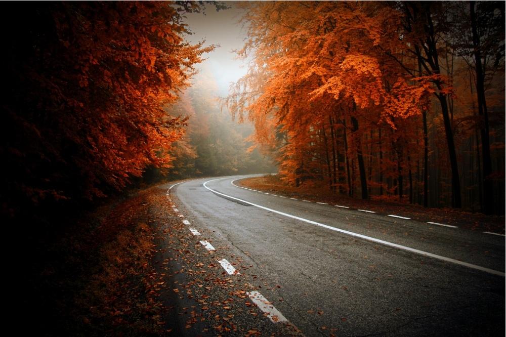 © nicu hoandra  Палитра извеличественных гор, Шотландия