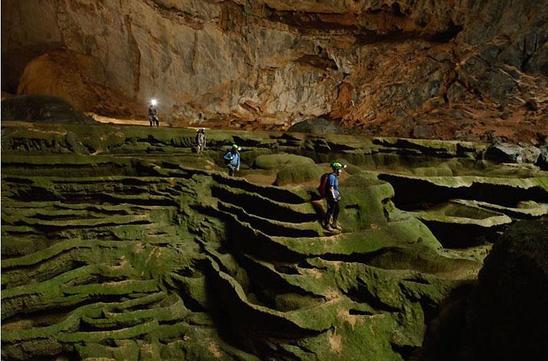 11. Зелень в этой пещере умудряется проникать даже туда, где света явно недостаточно. Вслед за расте