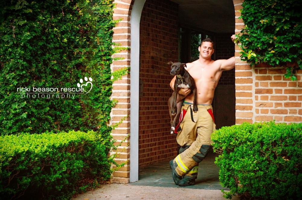 © Ricki Beason Rescue Photography  Проект очень популярен ифотограф надеется, что сможет прод