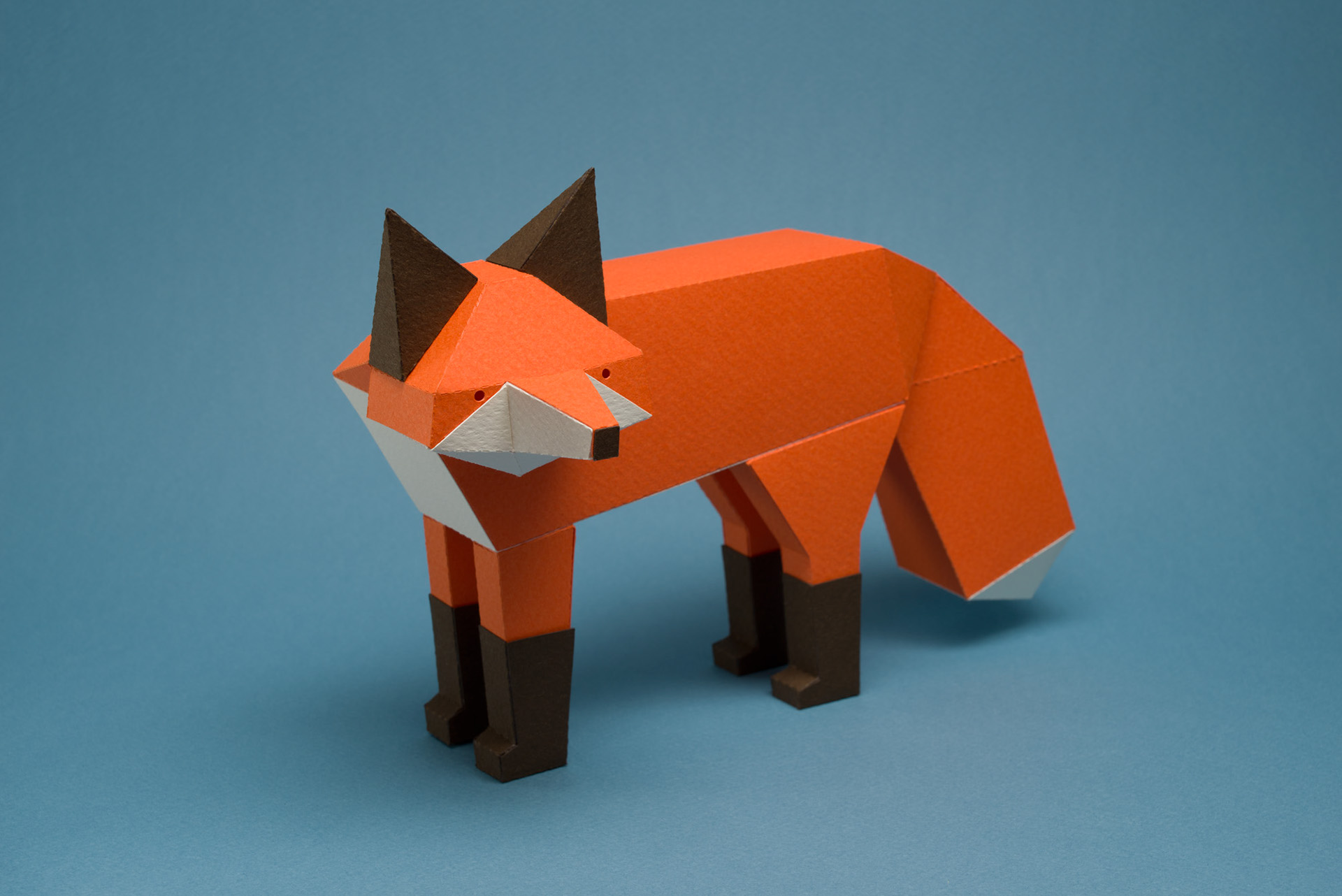 Cute Animals in Cardboard to Assemble (11 pics)