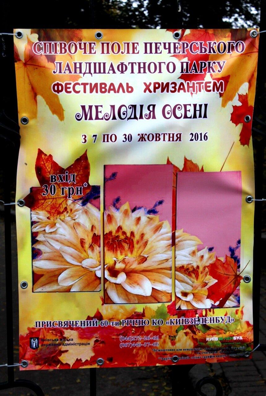 Афиша выставки хризантем 2016 на воротах Певческого поля
