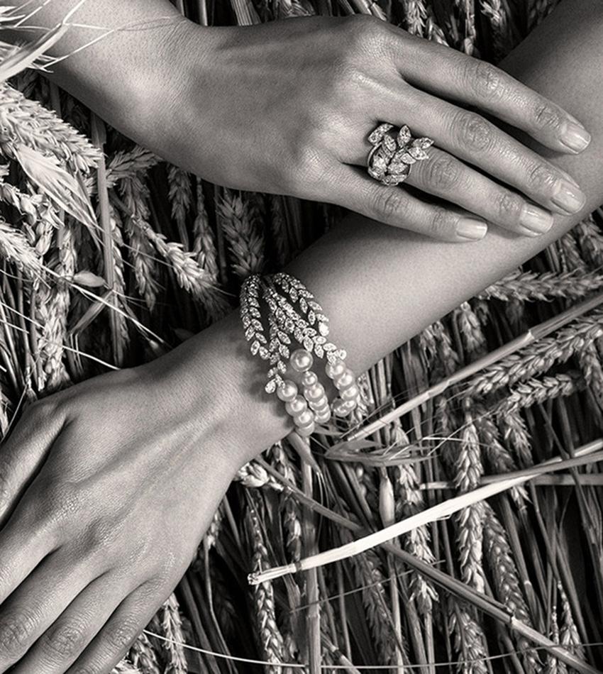 Les Blés de Chanel (2016)