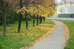 Сокол, Хорошевка, осень