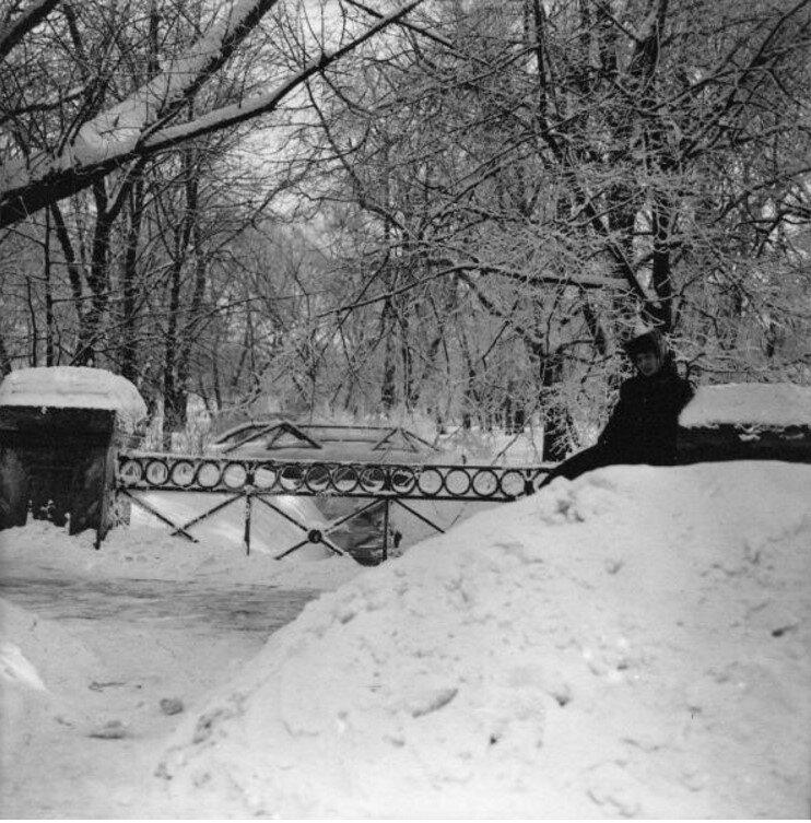 Екатерининский парк в Москве. Рая сидит у внешнего мостика