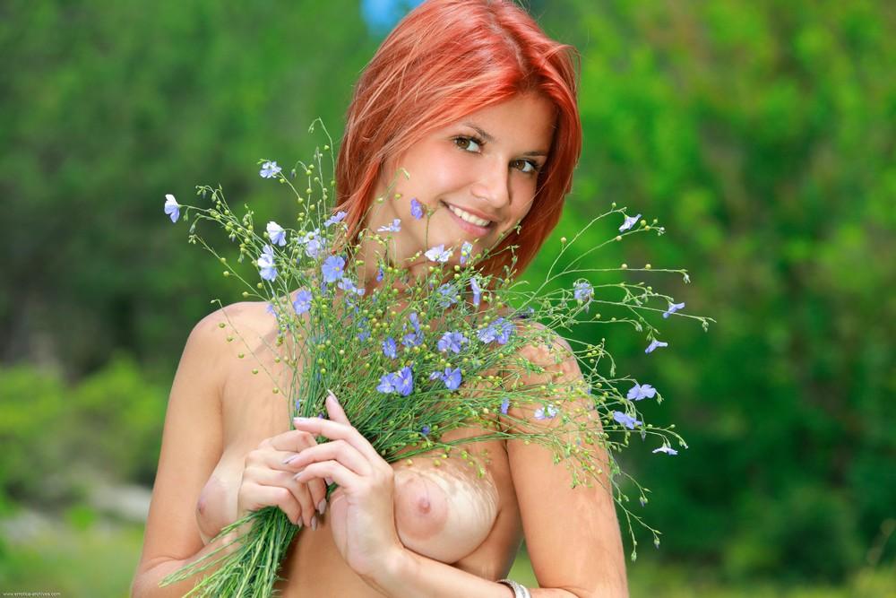 Виолла на цветочной поляне