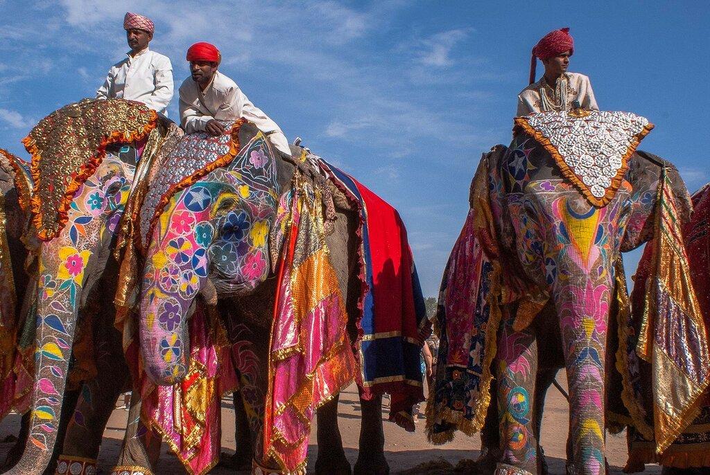 Раджастан, Индия. Фестиваль слонов.