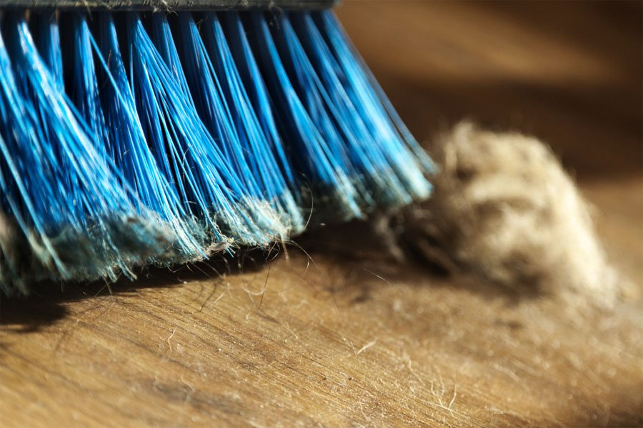 Ученые: домашняя пыль вредна для здоровья