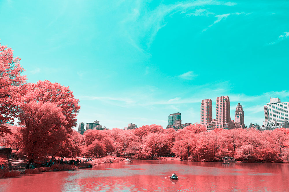 NYC's Central Park Photographed in Infrared by Paolo Pettigiani
