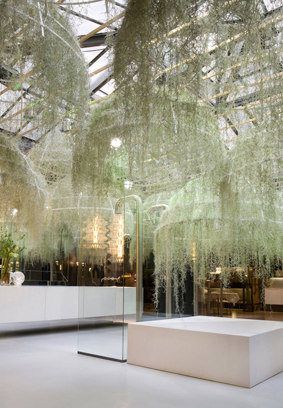 Rainforest Installation Made of Tropical Plants