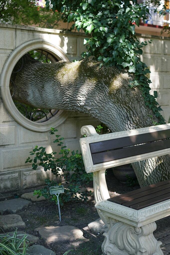 """Культурный центр """"Старый парк"""". Отверстие для дерева в заборе."""