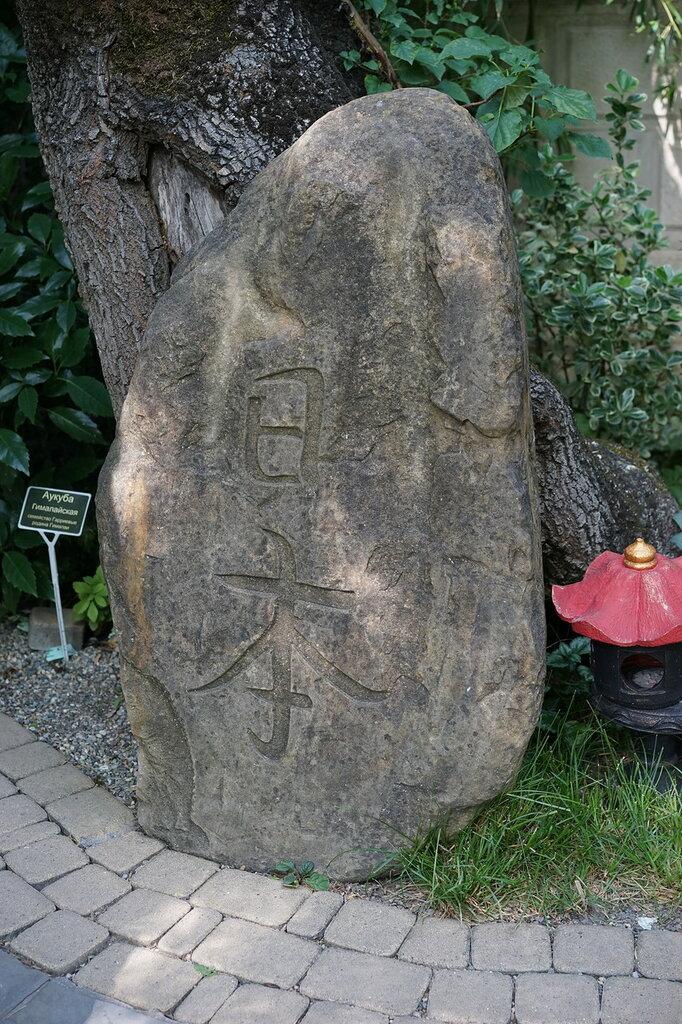 """Культурный центр """"Старый парк"""". Камень с японскими иероглифами."""
