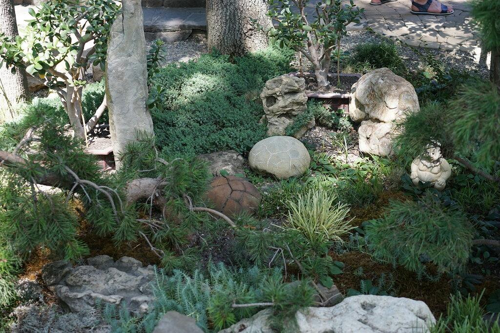 """Культурный центр """"Старый парк"""". Японский каменный сад."""