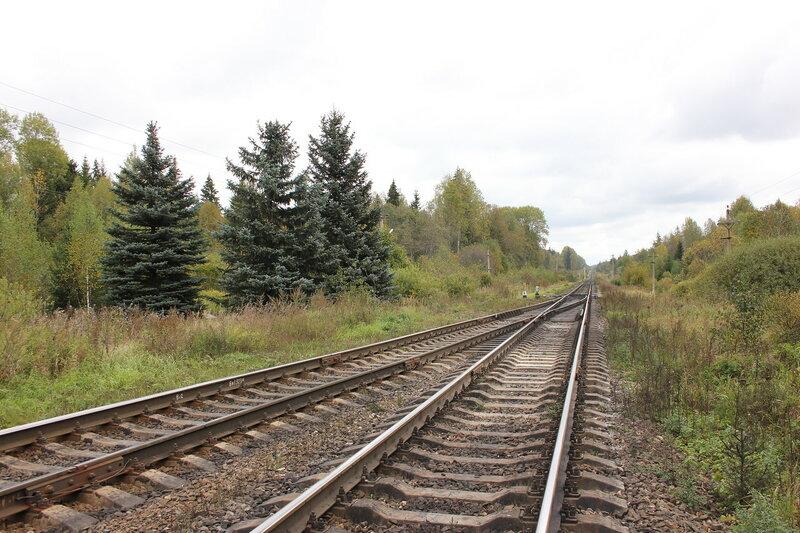 Восточные стрелки станции Подсосенка - место крушения поезда №4
