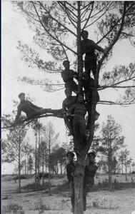 1915. В ожидании полевой почты