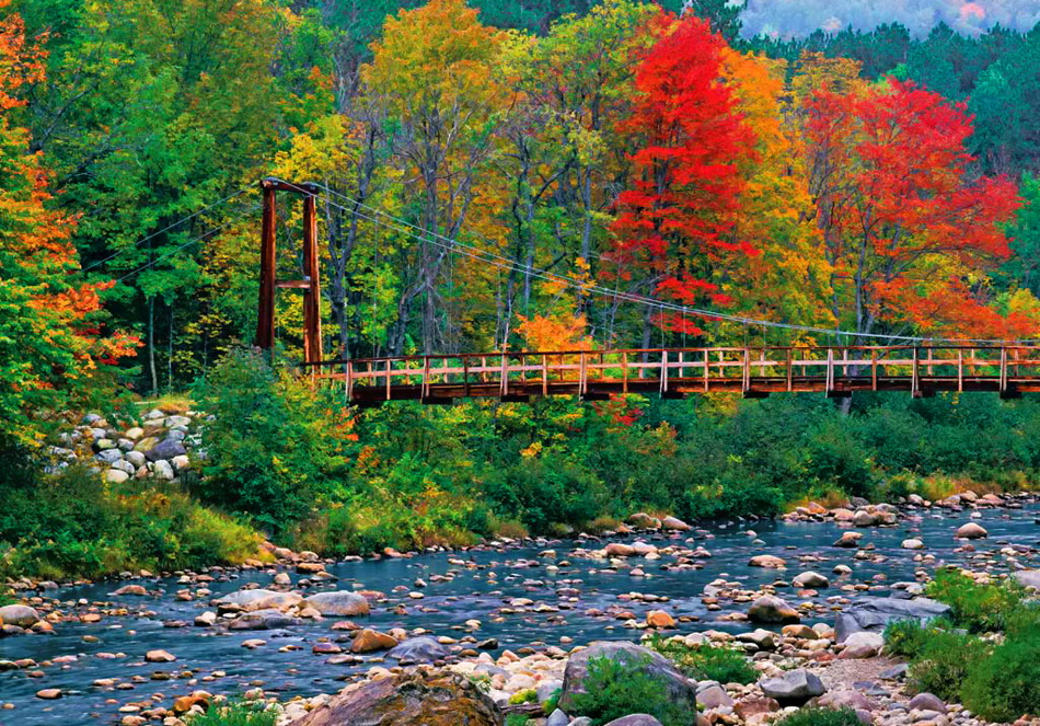 Highwater Trail Bridge and Wild River, White Mountain National Forest, Batchelders Grant, ME