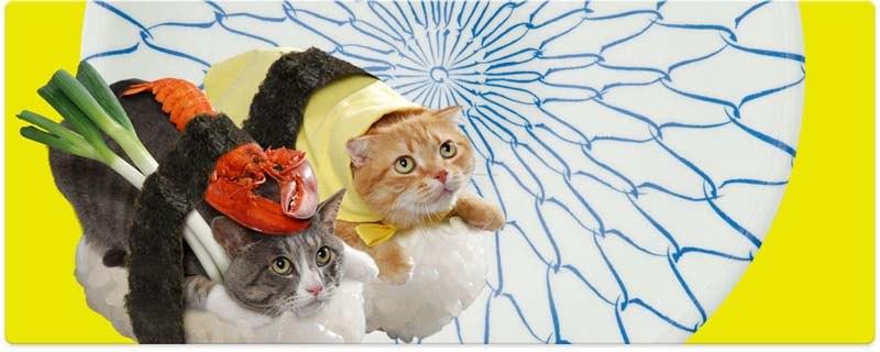 Котосуши (Неко-Суши) - японский рекламный кото-фото-проект, удивляющий интернет