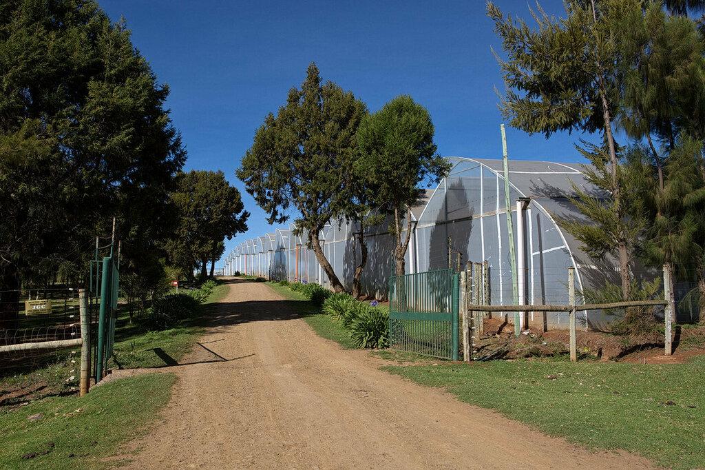 Когда лучше всего отдыхать в Занзибаре Сравнение погодных
