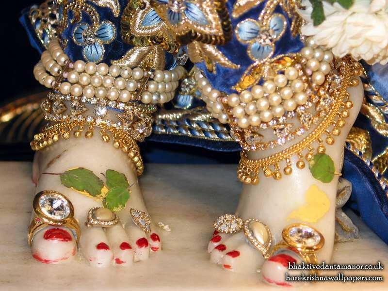 �������� ����� �������� ��� ����������� (��� ������), ���� ������������� �����, ������ (Sri Gokulananda Feet)