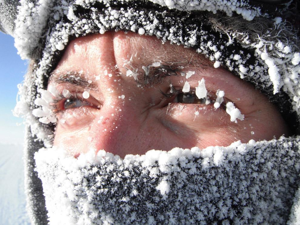 4. Антарктида была открыта 16 (28) января 1820 года русской экспедицией под руководством Фаддея Белл