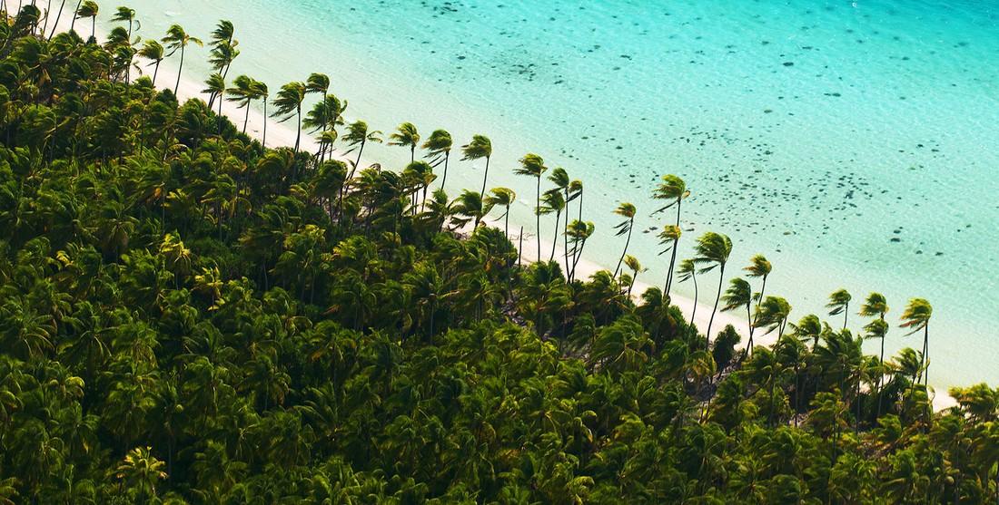 Chastnyj-ostrov-Marlona-Brando-vo-Francuzskoj-Polinezii-15-foto