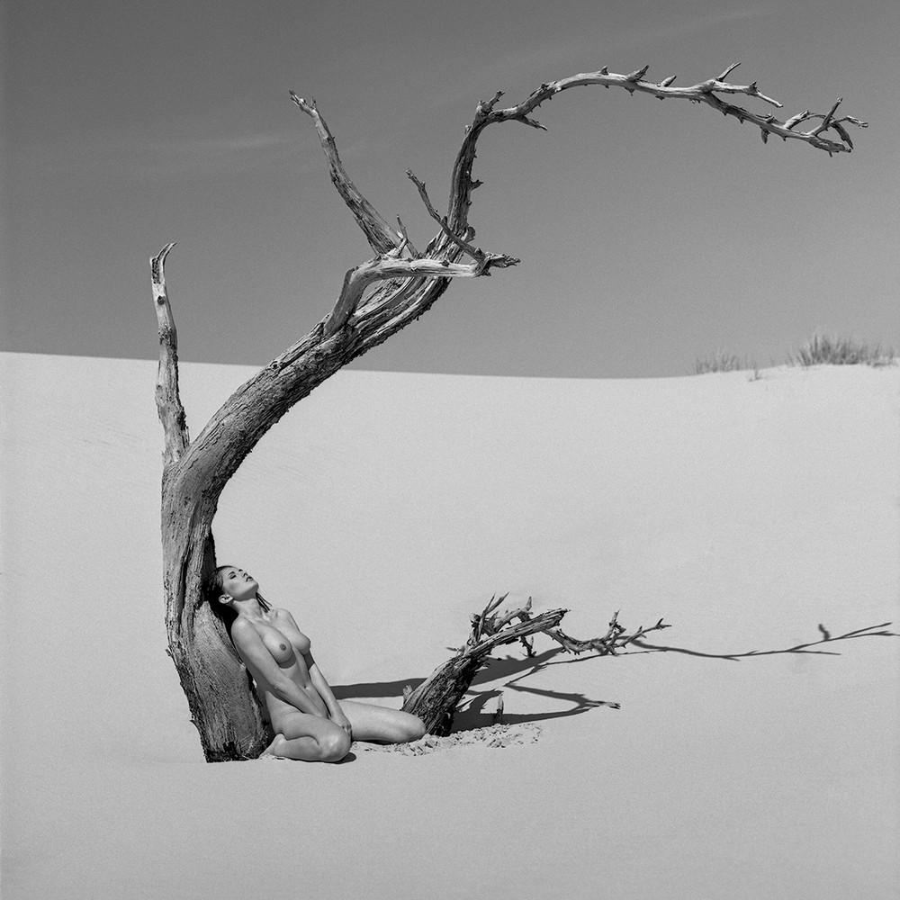 Черно-белое «Ню» от NinoVeron