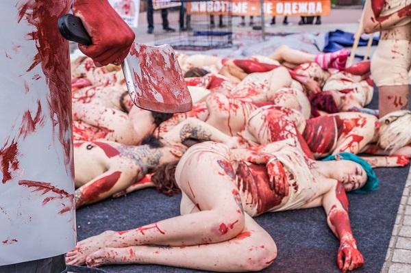 Ежегодно во многих городах России проводится акция «Животные не одежда!», где защитники природы объе
