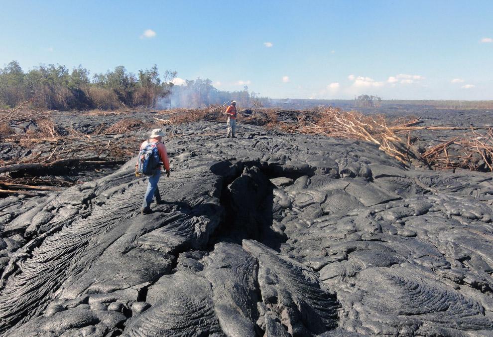 11. 24 октября 2014, лава из Килауэа на Гавайях продолжает движение. (Фото USGS HVO):
