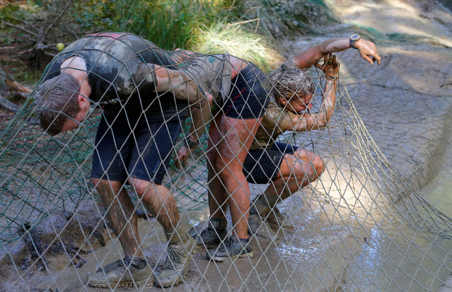 Competitors cross a net obstacle during the Wildsau Dirt Run (Wild Boar Dirt Run) obstacle course fu