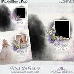PB_MaskArtTemplate40.jpg