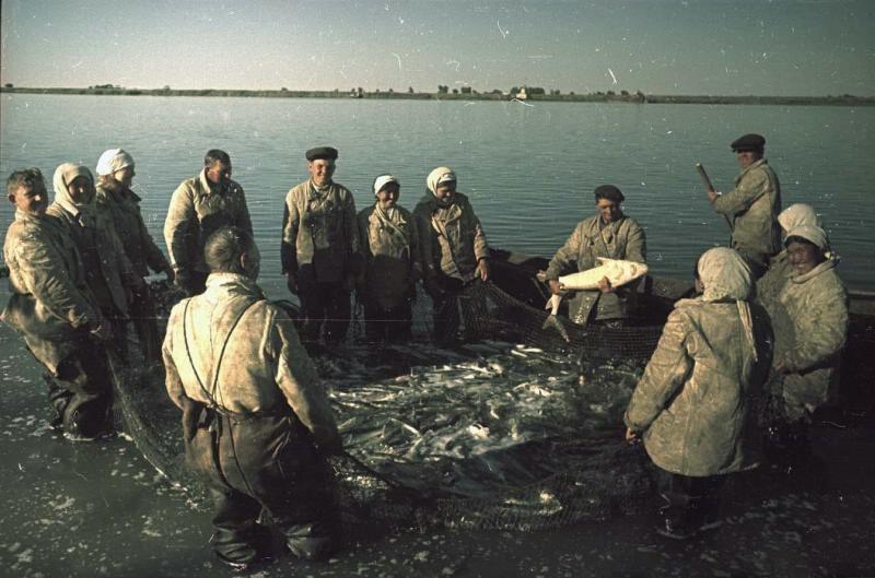 1949 Путина на Каспии. Владислав Микоша4.jpg