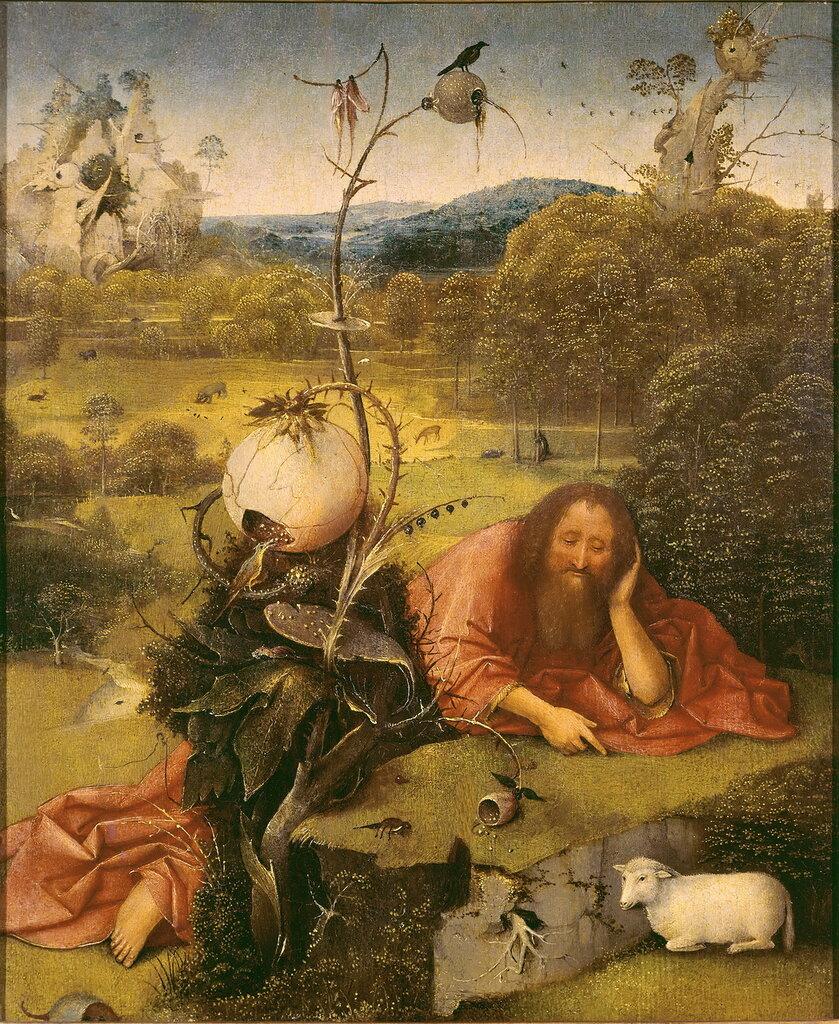 23.Иоанн Креститель в пустыне (1504-1505) (49 х 40.5) (Мадрид, музей Ласаро Гальдиано)_.jpg