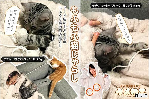 Костюм для любителей кошек из Японии
