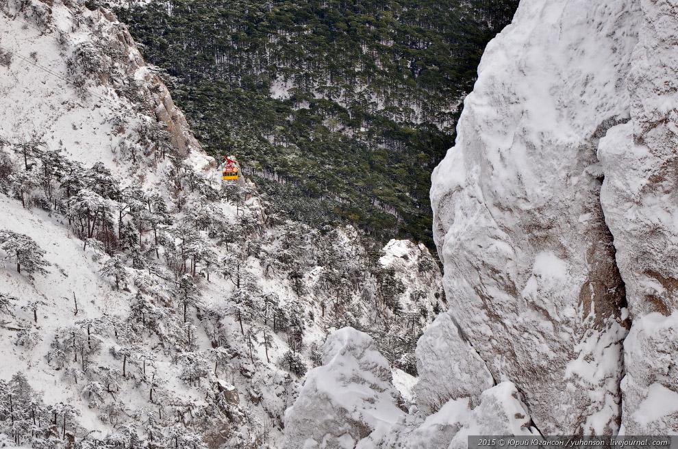 8. Камни с ледяными наростами не отличить от деревьев.